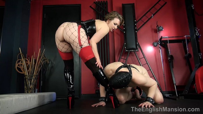 Mistress T - Remote Sex slave